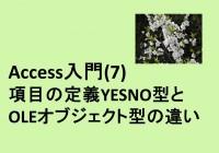 09_項目の定義YESNO型とOLEオブジェクト型の違い
