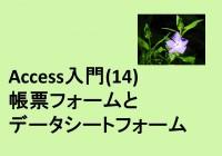 14_accessnyumon